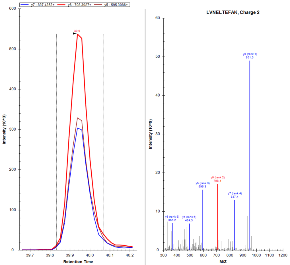 Three transitions (MRM's) of the tryptic peptide LVNELTEFAK are shown on the left, its entire MS2 spectrum on the right side.