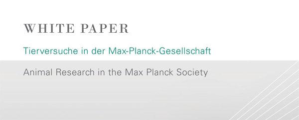 Hier finden Sie die Position der Max-Planck-Gesellschaft zu Tierversuchen in der Grundlagenforschung.