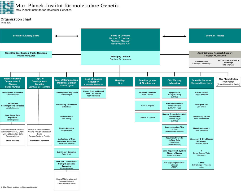 Organization chart of the Max Planck Institute for Molecular Genetics
