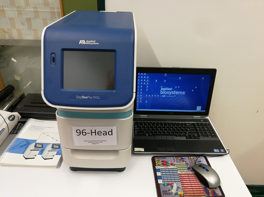 StepOnePlus Real-Time PCR System from <em>Applied Biosystems</em>